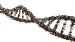 Ú teszt a HPV okozta daganat recidívájának szûrésére 2. rész